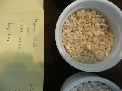 Home Made  Koji from GEM Cultures' koji-kin