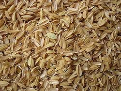 Rice Chaff